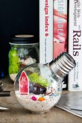 ���㡼�ʥ륹��������� �ե��˥��㡼 URBAN GREEN MAKERS BULB kit
