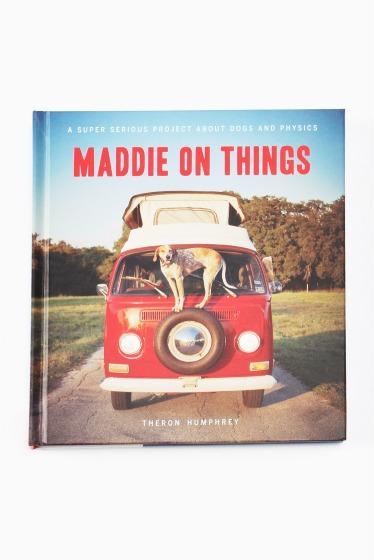 ������ �ե��˥��㡼 Maddie on Things �������� K