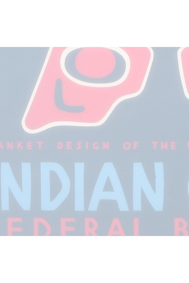 ������ �ե��˥��㡼 POSTER INDIAN COURT HAIDA BLANKET DESIGN �ܺٲ���4