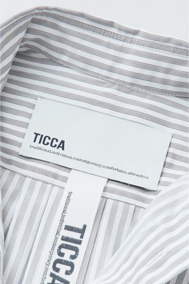 �� �ȡ������ TICCA �ե����֥��ȥ饤�ץӥå������ �ܺٲ���12