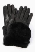 ������ Gala Gloves �ե�������ӥ��?��